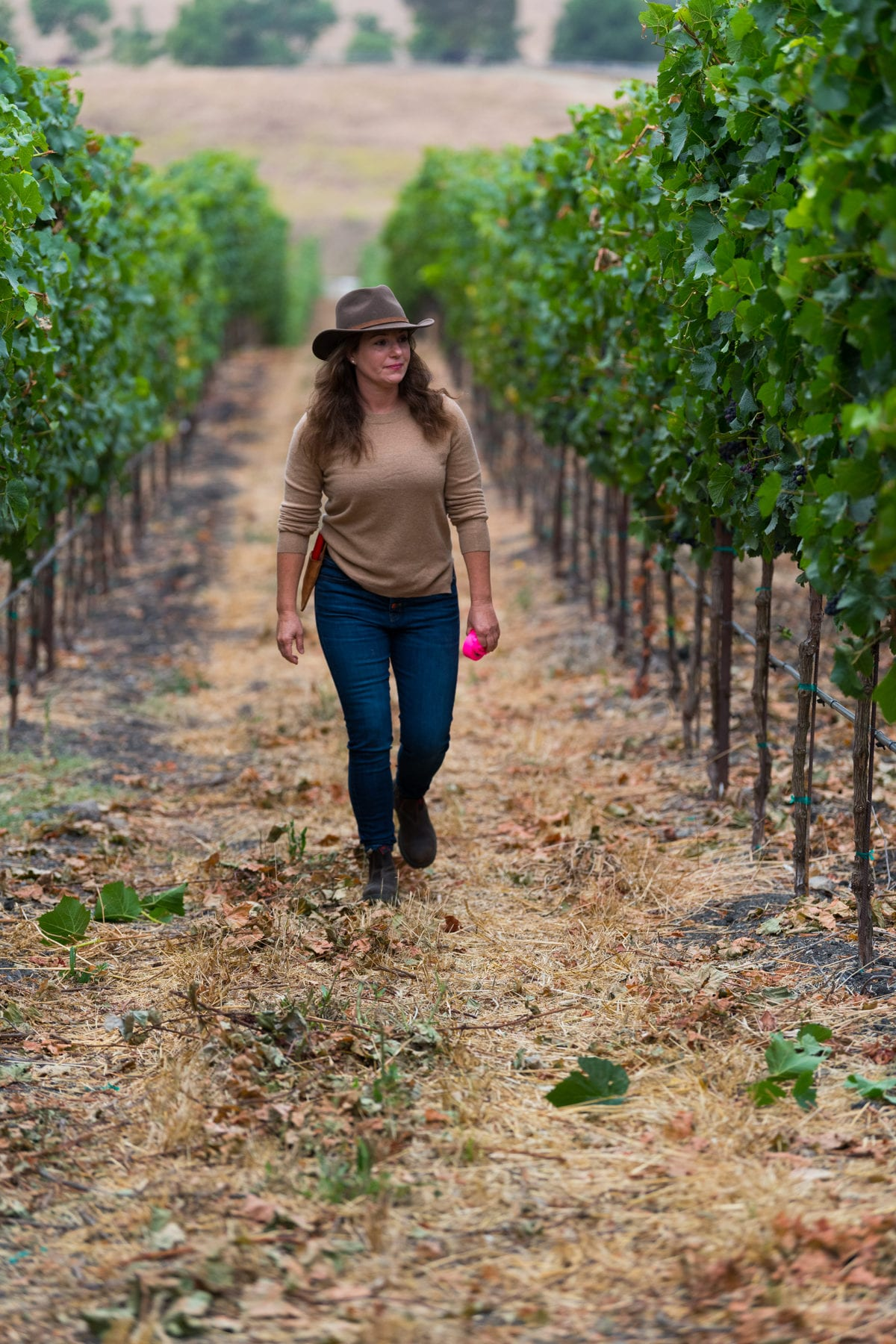 Megan Baccitich - WInemaker